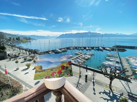 Hotel LAKEVIEW Hotel Le Rivage